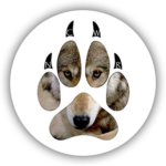 Never Cry Wolf Rescue and Adoptions